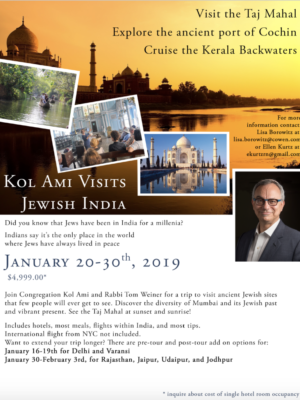 updated India Trip