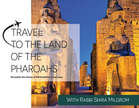 Kol Ami Travels To Egypt-2